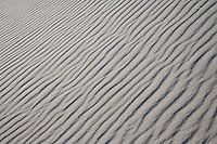 Wind swept beach pattern, New Jersey