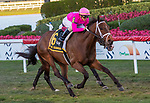 February 29, 2020: #6 Zulu Alpha with jockey Tyler Gaffalione on board, wins the Mac Diamida Stakes  G2 on February 29th, 2020 at Gulfstream Park in Hallandale Beach, Florida. LizLamont/Eclipse Sportswire/CSM