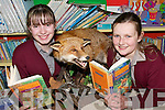 FOX HUNT: Pupils from Kilconly National School in Ballybunion, with some of the stuffed animals on display at the school this week..L/r.Megan Hannon and Hillary Costello.   Copyright Kerry's Eye 2008