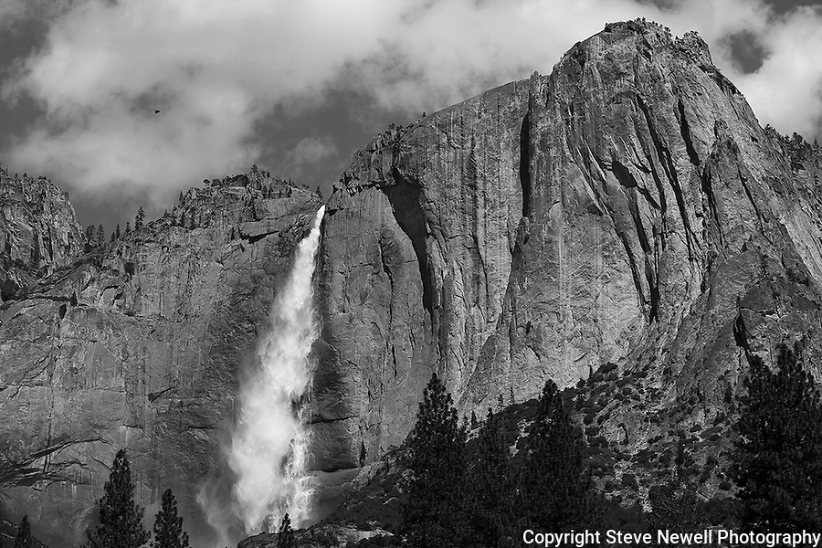 """Bird's Eye"" Black and White, Yosemite Falls Waterfall, Yosemite National Park, California. I spent two weeks in the Spring of 2013 climbing up the opposite canyon's wall in order to get an angle that captured all three sections of the waterfall. In this photo you can see a bird flying towards the waterfall on left side in the sky. I learned on the Yosemite National Park's website that no one had a photograph of the middle section of the waterfall.  Their description of the middle section is ""often ignored middle section""  All other photographers only have photographs showing an angle that has the upper and lower sections in view.  I had to climb down and return moving further up the canyon to get an angle to see directly into the middle section."