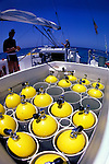 17 May 1983: Aluminum Scuba cylinders are filled with compressed air on the rear deck of the Morning Star, a liveaboard sailing dive boat, sloop rigged, off the shores of Bimini, in the Bahama Islands..Mandatory Photo Credit: Ed Wolfstein Photo