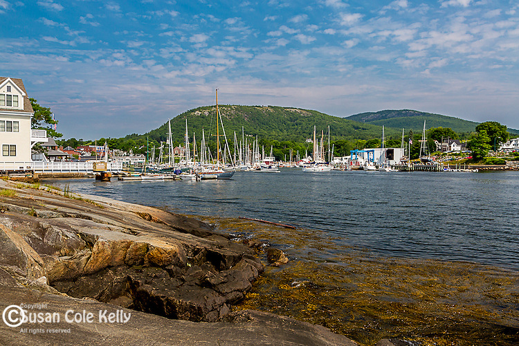 Camden Harbor in Camden, Maine, USA