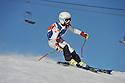 08/01/2013 giant slalom minis run 2