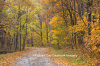 63876-02201 Road in fall, Stephen A. Forbes State Park, Marion Co., IL