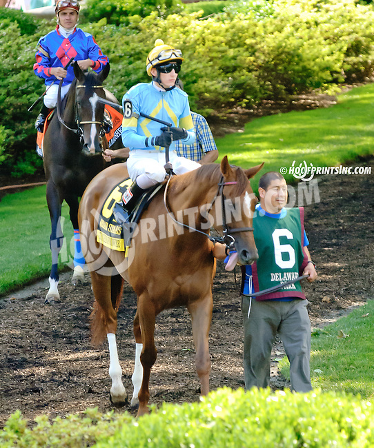 Zucchini Flower before The Obeah Stakes (gr 3) at Delaware Park racetrack on 6/14/14