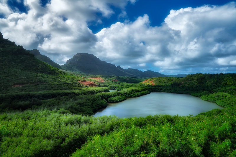 Alekoko Fish Pond. Kauai, Hawaii