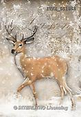 Isabella, CHRISTMAS SYMBOLS, WEIHNACHTEN SYMBOLE, NAVIDAD SÍMBOLOS, paintings+++++,ITKE551868,#xx# deer