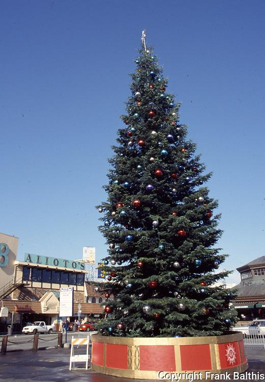 Christmas tree at Fisherman's Wharf