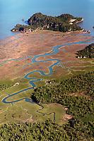 Aerial view of serpentine river system, Alaska