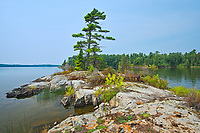 Island on Lake of the Woods<br />Kenora District<br />Ontario<br />Canada