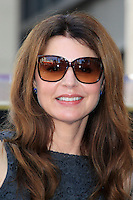 LOS ANGELES - AUG 22: Jane Leeves at a ceremony where Valerie Bertinelli is honored with a star on the Hollywood Walk of Fame on August 22, 2012 in Los Angeles, California