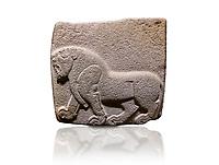 Aslantepe Hittite relief sculpted orthostat stone panel. Limestone, Aslantepe, Malatya, 1200-700 BC. Anatolian Civilisations Museum, Ankara, Turkey. Depiction of a horse walking.<br /> <br /> Against a white background.