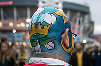 A Wales fan showing his all round facepaint outside of the stadium <br /> <br /> Photographer Simon King/CameraSport<br /> <br /> International Rugby Union - 2017 Under Armour Series Autumn Internationals - Wales v Australia - Saturday 11th November 2017 - Principality Stadium - Cardiff<br /> <br /> World Copyright &copy; 2017 CameraSport. All rights reserved. 43 Linden Ave. Countesthorpe. Leicester. England. LE8 5PG - Tel: +44 (0) 116 277 4147 - admin@camerasport.com - www.camerasport.com