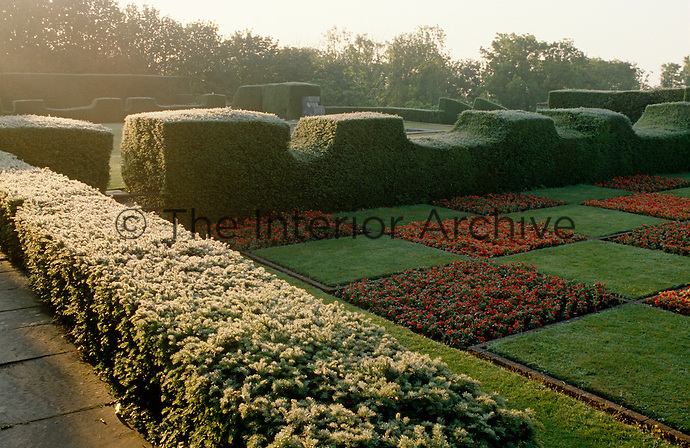 An early morning view across the frost covered clipped yew hedges which surround a checkerboard-planted garden