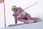 2/20/06 -- The 2006 Torino Winter Olympics -- Sestriere , Italy. -- Alpine Skiing - Men's Giant Slalom -- .The Herminator******* .Herman Maier.Photo by Scott Sady, USA TODAY staff.