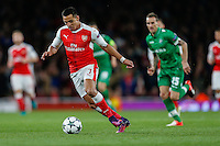 Alexis Sanchez of Arsenal on the ball during the UEFA Champions League match between Arsenal and PFC Ludogorets Razgrad at the Emirates Stadium, London, England on 19 October 2016. Photo by David Horn / PRiME Media Images.
