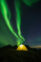 Northern lights shine in sky over tent, Moskenesøy, Lofoten Islands, Norway
