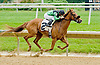 Jungle Princess winning at Delaware Park on 5/21/12