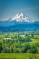 Mt Hood overlooking the Hood River Valley