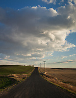 Rural Rolling Country Road heading into Horizon, Davenport, WA, USA.