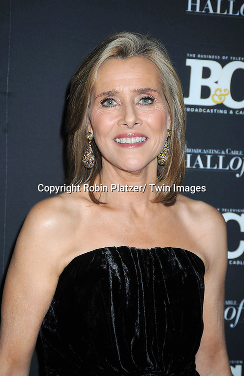 Meredith Vieira attending the 20th Annual  Broadcasting & Cable Hall of Fame Awards on October 27, 2010 at The Waldorf Astoria Hotel in New York City.