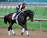 LOUISVILLE, KENTUCKY - APRIL 30: Lockdown, owned by Juddmonte Farm Inc and trained by William Mott, exercises in preparation for the Kentucky Oaksat Churchill Downs on April 30, 2017 in Louisville, Kentucky. (Photo by Jon Durr/Eclipse Sportswire/Getty Images)