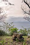 Coast - Dominica