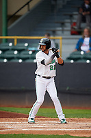 Clinton LumberKings center fielder Luis Liberato (22) at bat during a game against the Lansing Lugnuts on May 9, 2017 at Ashford University Field in Clinton, Iowa.  Lansing defeated Clinton 11-6.  (Mike Janes/Four Seam Images)