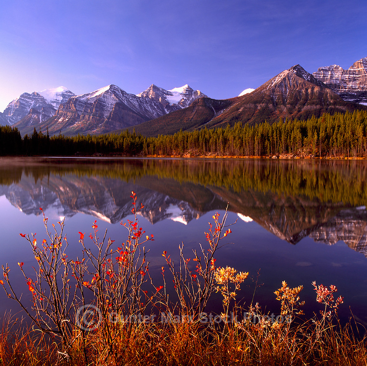 Waputik Range reflecting in Herbert Lake, along the Icefields Parkway in Banff National Park, in the Canadian Rockies, Alberta, Canada, in Autumn
