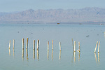 Pier in the water at the mouth of the Alamo River, Salton Sea, Calif.