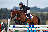 CLASS 5: FMG Young Rider Series - Sponsored by Auckland Insulation. 2020 NZL-Fieldline Horse Floats Brookby Showjumping Summer GP Show. Papatoetoe Pony Club. Auckland. Saturday 8 February. Copyright Photo: Libby Law Photography