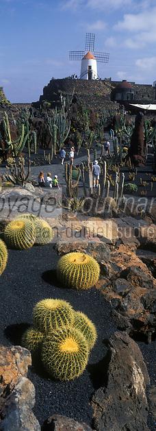 Europe/Espagne/Canaries/Lanzarote/Guatiza : Le jardin de Cactus conçu par César Manrique