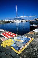 Faial, Açores, 2005