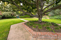 Mitchell Garden, March 20, 2018.<br /> (Photo by Marc Campos, Occidental College Photographer)
