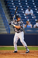 Tampa Yankees center fielder Trey Amburgey (17) at bat during a game against the Bradenton Marauders on April 15, 2017 at George M. Steinbrenner Field in Tampa, Florida.  Tampa defeated Bradenton 3-2.  (Mike Janes/Four Seam Images)