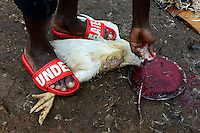 NIGERIA, Oyo State, Ibadan, quarter Agudi, selling and butchering of live chicken at market / Markt fuer lokales Gefluegel, Verkauf von lebenden Huehnern und Schlachtung vor Ort
