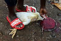 NIGERIA, Oyo State, Ibadan, quarter Agudi, selling and butchering of live chicken at market / Markt fuer lokales Gefluegel, Verkauf von lebenden Huehnern und Schlachtung vor Ort