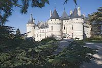 Europe/France/Centre/Loir-et-Cher/Chaumont-sur-Loire: le Château et les cédres centenaires du parc