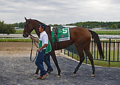10th Cotillion Stakes - Midnight Bisou by DQ