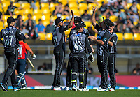 Ish Sodhi high-fives Colin de Grandhomme for his catch of Lewis Gregory. Twenty20 International cricket match between NZ Black Caps and England at Westpac Stadium in Wellington, New Zealand on Sunday, 3 November 2019. Photo: Dave Lintott / lintottphoto.co.nz