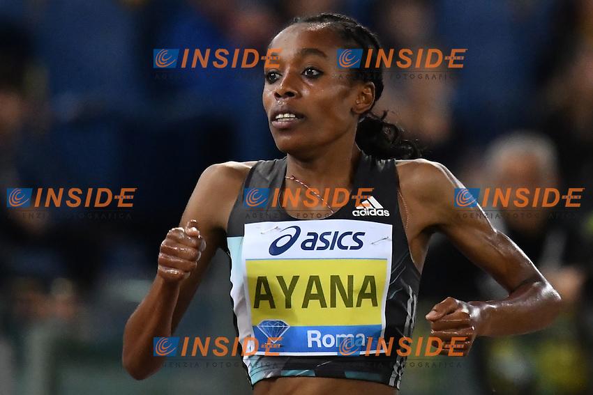 Alamz AYANA ETH 5000m Women Winner<br /> Roma 02-06-2016 Stadio Olimpico <br /> IAAF Diamond League Golden Gala <br /> Atletica Leggera<br /> Foto Andrea Staccioli / Insidefoto
