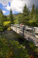 Mountain Biker crosses the Juneau Creek Bridge, Resurrection Pass Trail, Kenai Peninsula, Chugach National Forest, Alaska.