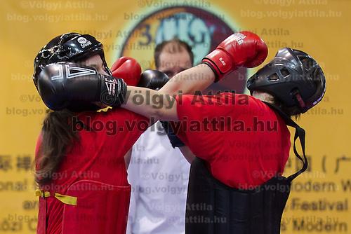 3rd International Chan Wu, Traditional Kung Fu and Wu Shu Championships in Budapest, Hungary on November 24, 2012. ATTILA VOLGYI