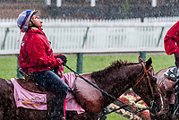 BALTIMORE, MD - MAY 19: A pony girl makes the most of a sudden torrential downpour by grabbing a few raindrops as a drink on Black-Eyed Susan Day at Pimlico Race Course on May 19, 2017 in Baltimore, Maryland.(Photo by Scott Serio/Eclipse Sportswire/Getty Images)