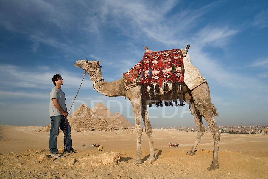 A male tourist with a camel at the Pyramids of Giza near Cairo, Egypt.