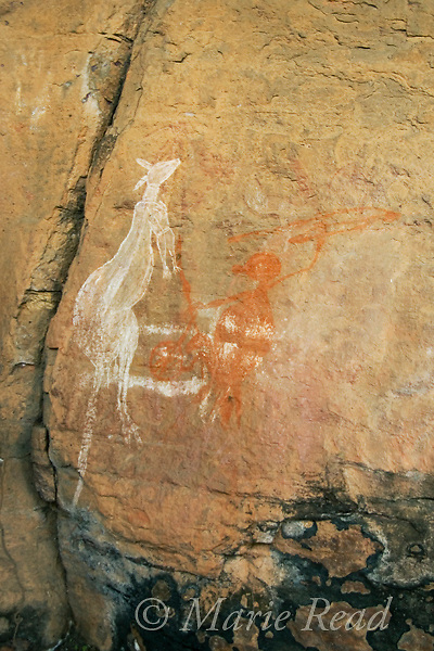 Aboriginal rock art portraying hunting a kangaroo, Nourlangie Rock, Kakadu National Park, Northern Territory, Australia