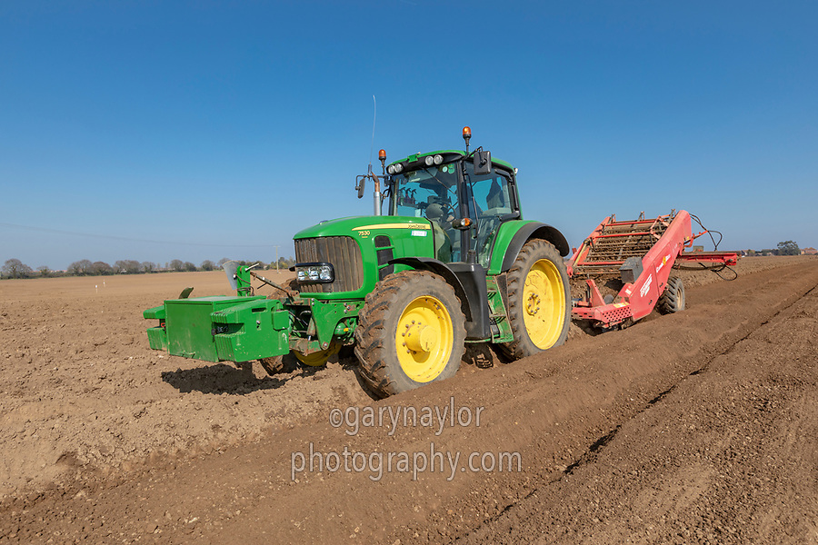 Destoning for potato planting - Norfolk, March