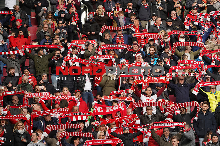 01.12.2018, RheinEnergieStadion, Koeln, GER, 2. FBL, 1.FC Koeln vs. SpVgg Greuther Fürth,<br />  <br /> DFL regulations prohibit any use of photographs as image sequences and/or quasi-video<br /> <br /> im Bild / picture shows: froehliche FC Koeln  Fans mit fahnen <br /> <br /> Foto © nordphoto / Meuter