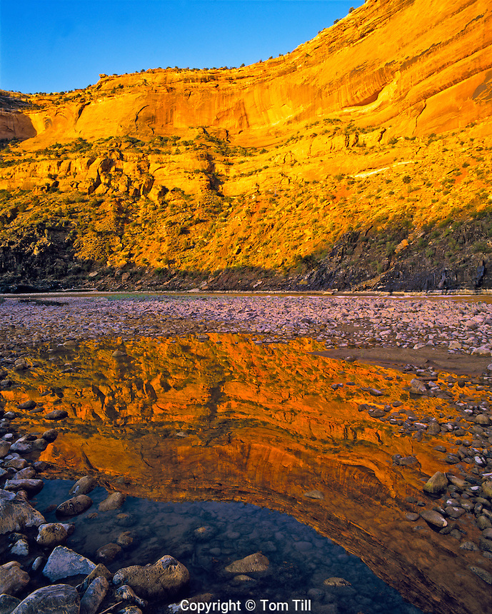 Westwater Canyon reflection, Proposed Westwater Canyon Wilderness, Colorado River, Utah