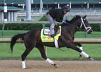 May 1, 2014: Viceremos gallops in preparation for the Kentucky Derby at Churchill Downs in Louisville, KY. Zoe Metz/ESW/CSM